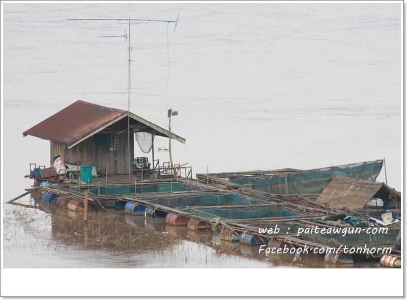 https://paiteawgun.com/blog/wp-content/uploads/2011/12/chiangkhan_067.jpg